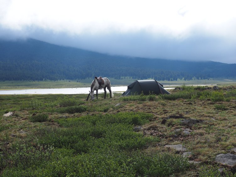 My riding horse and tent pictured by the lake.