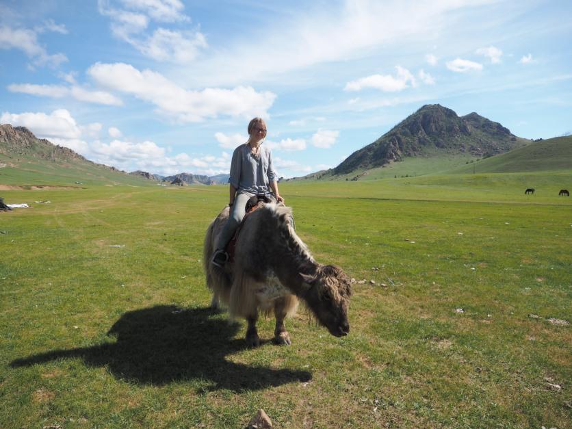 Riding a yak.